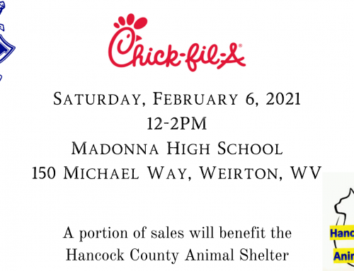Chick-Fil-A Truck Coming to Madonna